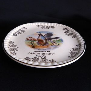Vintage Trinket/Souvenir Collectors Plate -Souvenir of Capon Bridge West Virginia